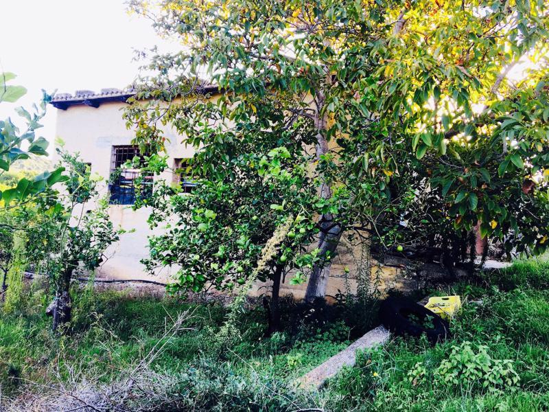 Villa with land, sea & mountain views, Campofelice di Roccella, Sicily