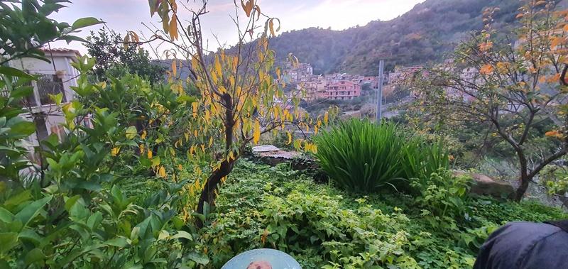 Rocca-Sciglio (3)